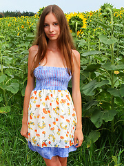Delicious teen with impressive breasts and hairy pussy taking off clothes among the sunflowers.