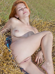 Violla basks in the sunlight on a field of hays with her see-through dress as she sensually poses and bares her gorgeous physique and delectable assets.